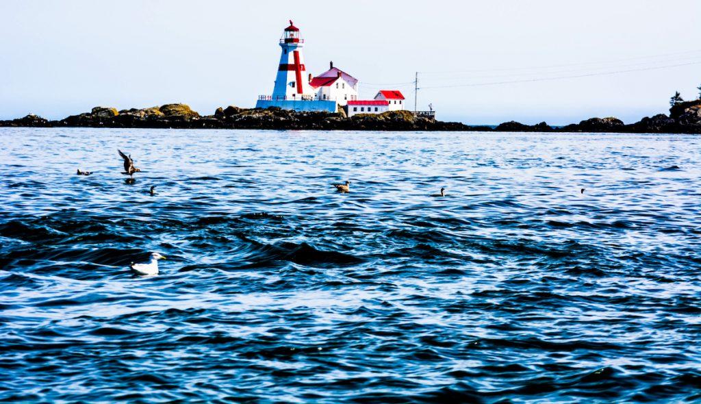 Head Harbour Lighthouse, Campobello Island, NB