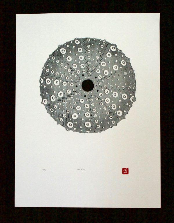 """Urchin"" Lino Block Print by Alanna Baird"